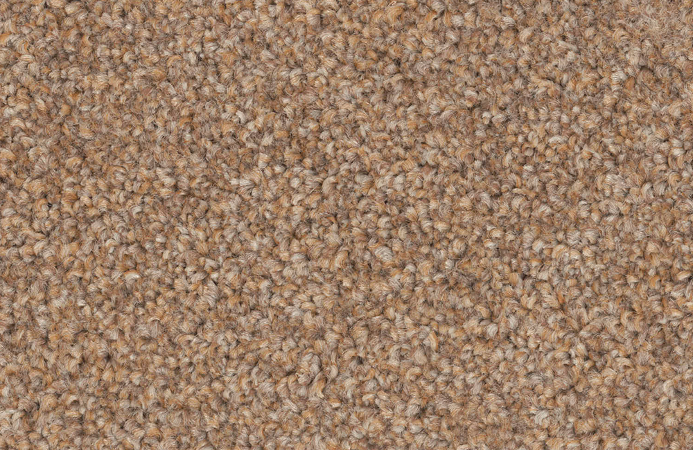 Image Result For Best Stain Resistant Carpet